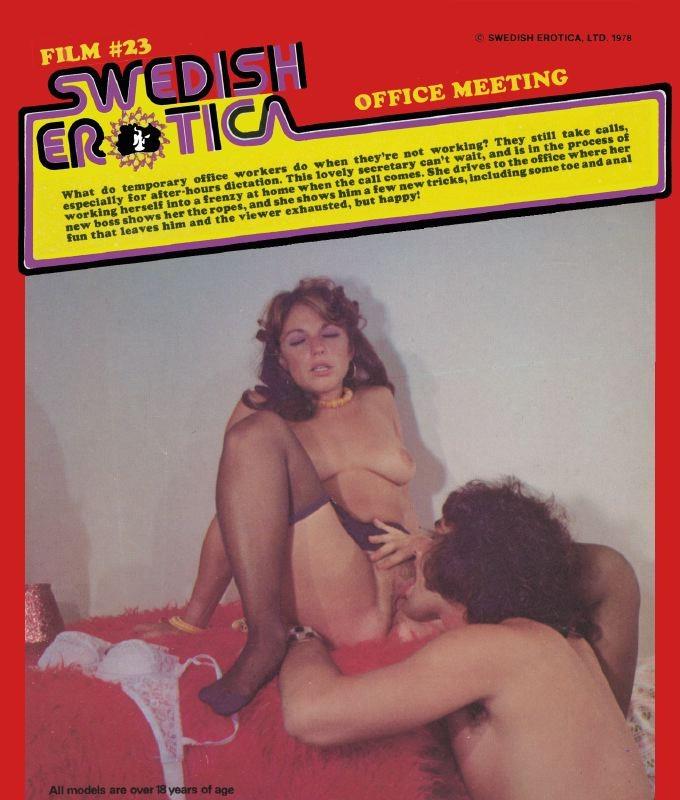Swedish Erotica 23 - Office Meeting