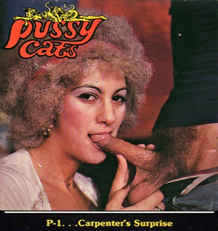 Pussy Cats 1 - Carpenter's Surprise
