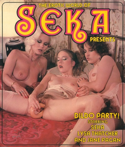 The Erotic World Of Seka 503 - Dirty Party!