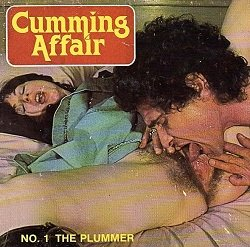 Cumming Affair 1 - The Plummer