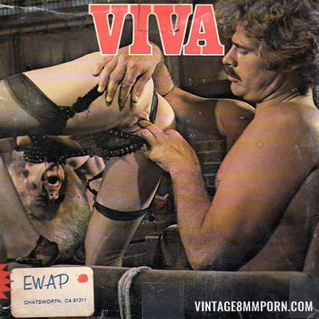 Viva 7 – The Bitch